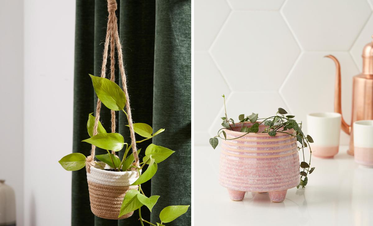 10 beaux cache-pots pour vos plantes préférées